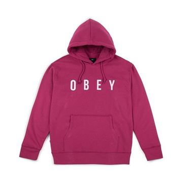 Picture of OBEY ANYWAY HOOD